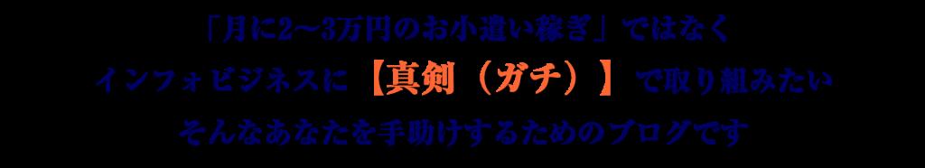 「月に2~3万円のお小遣い稼ぎ」ではなくインフォビジネスに【真剣(ガチ)】で取り組みたい そんなあなたを手助けするためのブログです